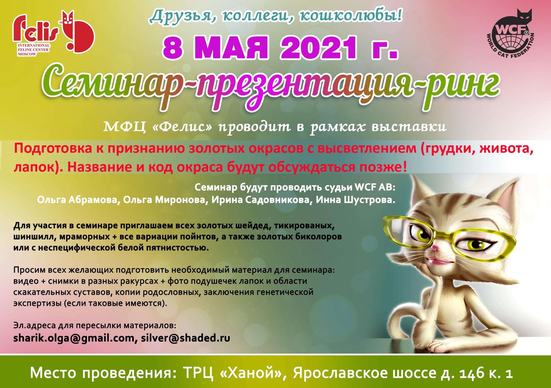 Фелис клуб кошек москва официальный сайт ночной клуб казани bash